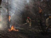 5 ilde çıkan orman yangını kontrol altına alındı
