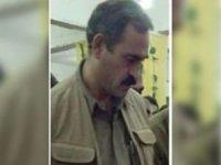 Kırmızı kategorideki PKK'lı Karaaslan öldürüldü